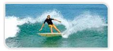 Surf et catamaran aux Antilles