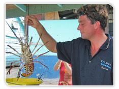 Pêche à la langouste en catamaran