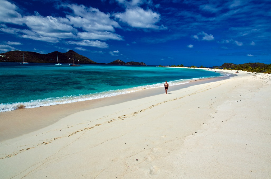 Grenadines Sandy Island
