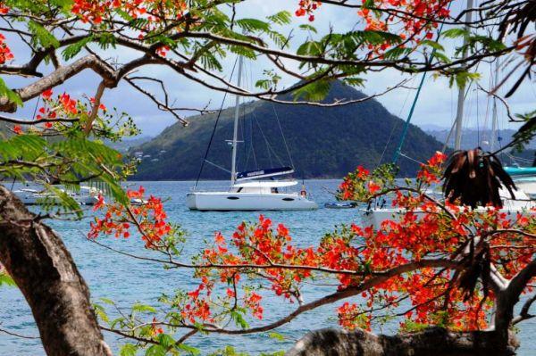 Croisiere catamaran aux Grenadines