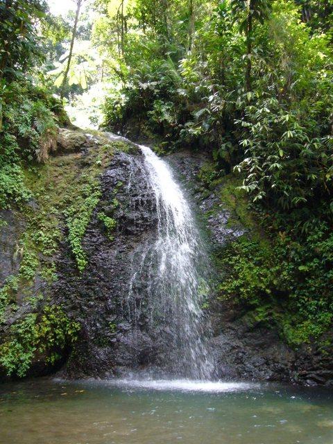 Cascade Le Saut du Gendarme Martinique