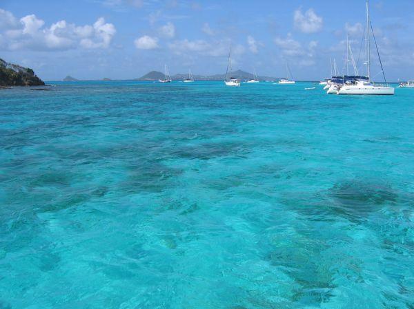 Tobago Cays, le paradis des Grenadines...